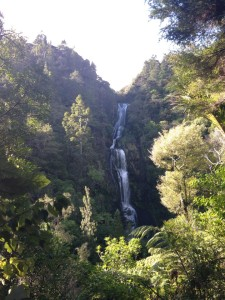 A waterfall near Piha Beach, west of Auckland, New Zealand.