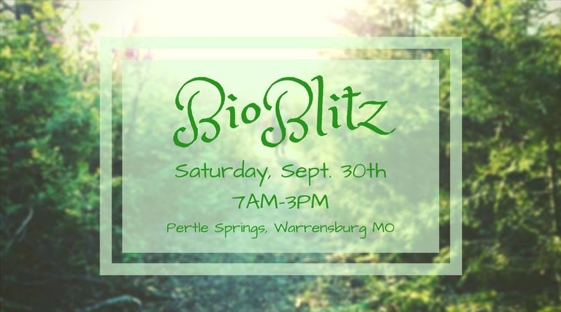 Bio Blitz brings environmental education to the public